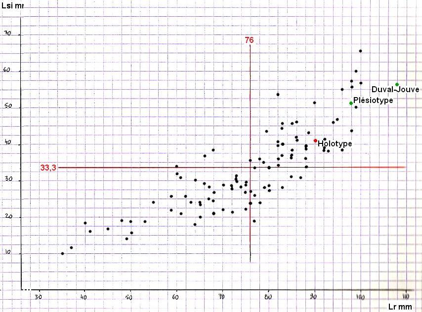 8 graph11