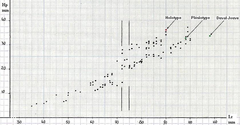 8 graph2