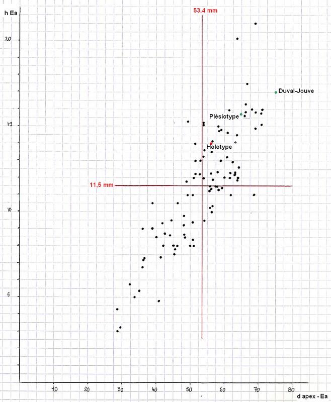 8 graph5