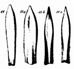 Figurations de Blainville
