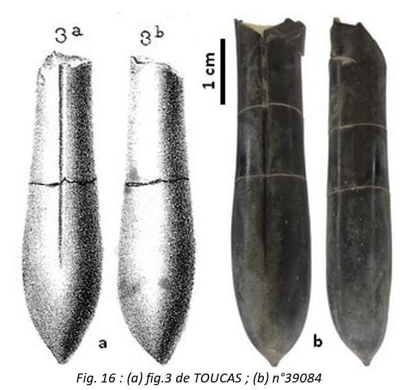 Fig 16 leg