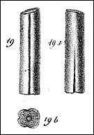 Fig1 min
