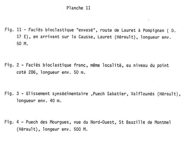 Planche 11a