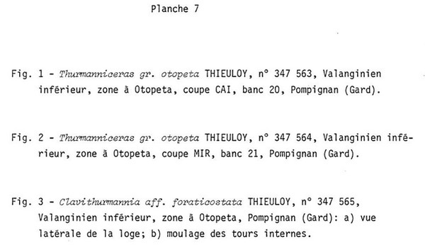 Planche 7a